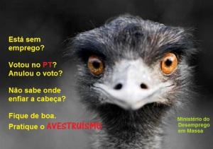 avestruismo7
